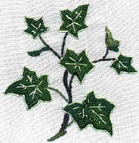 JDR183  Brazilian Embroidery Design
